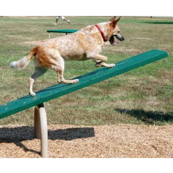 Dog Park | Balance Ladder