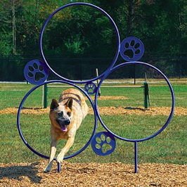 Dog Park | Jumping Hoops