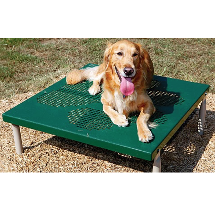 Dog Park | Stay Table