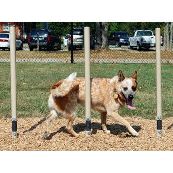 Dog Park | Weave Posts