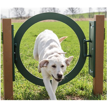 Dog Park Jumping Ring | 427