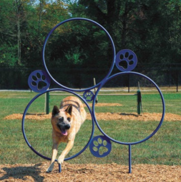 Dog Park Jumping Hoops | 430