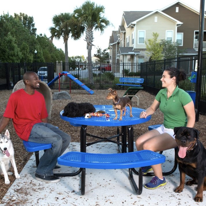 Dog Park Table | 358