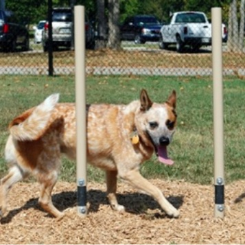 Dog Park Weave Posts | 460