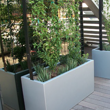 Screen Wall | Wilshire Trellis